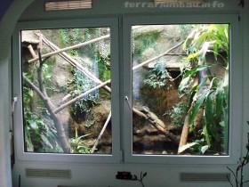 Wasseragamen Terrarium 2009