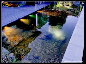 Koi Teich 7m x 3m x 1,20m LED-Beleuchtung