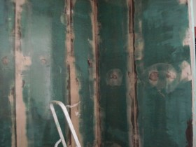 Wasseragamen Terrarienbau mit Rigips Epoxydharz