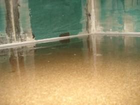 Bodenplatte Epoxydharz Wasseragamen Terrarium